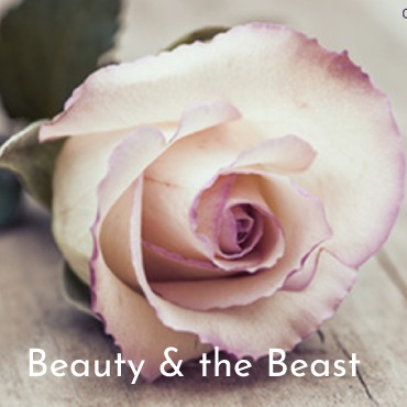 Image of a Rose with title Beauty & the Beast